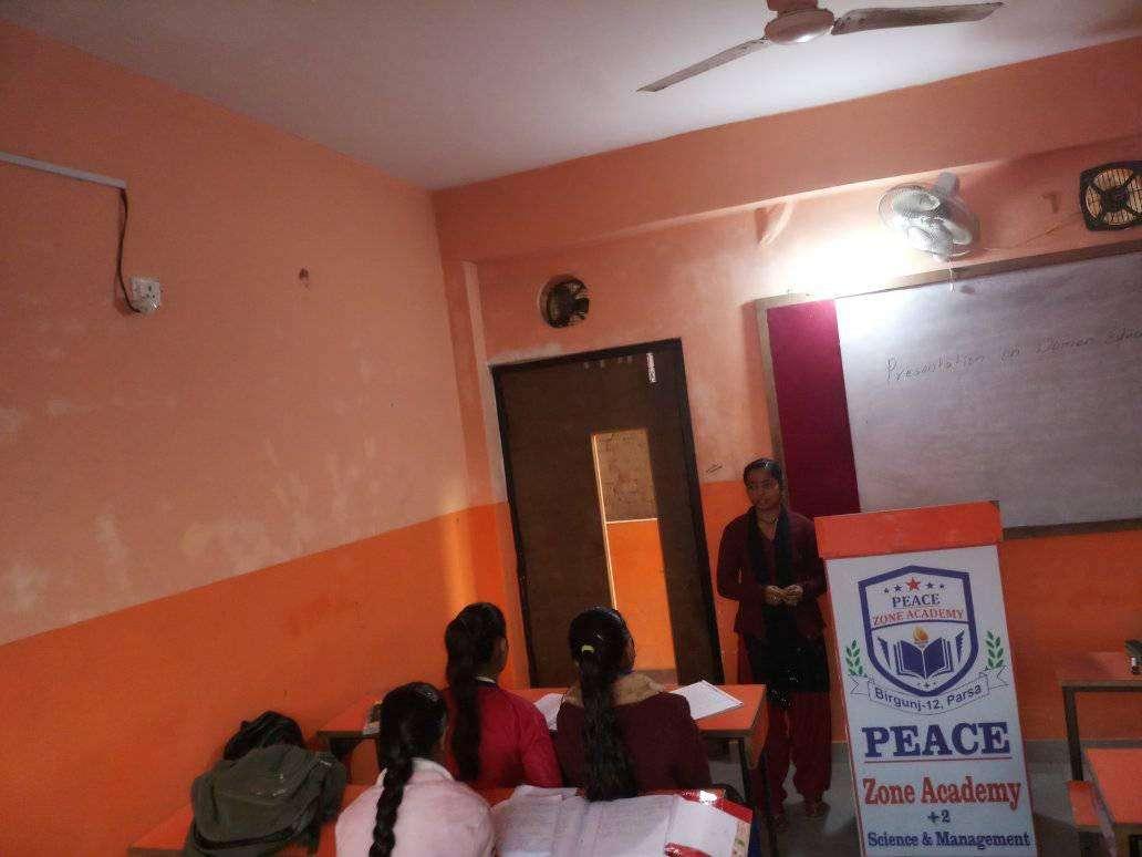 Peace Zone Academy