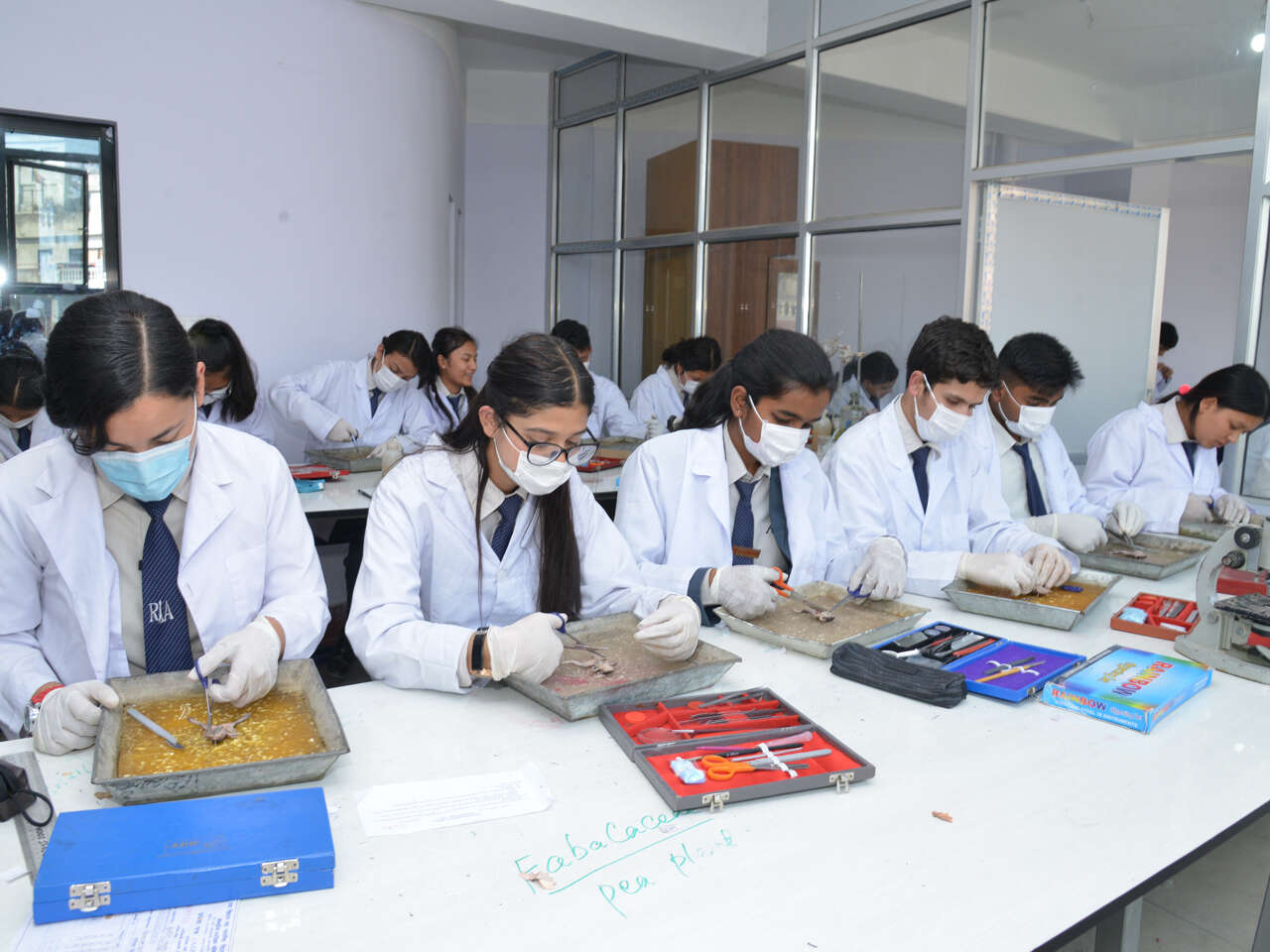 Reliance International Academy